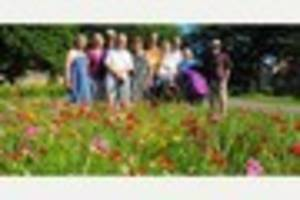 Flowers planted in Bristol park to reduce anti-social behaviour